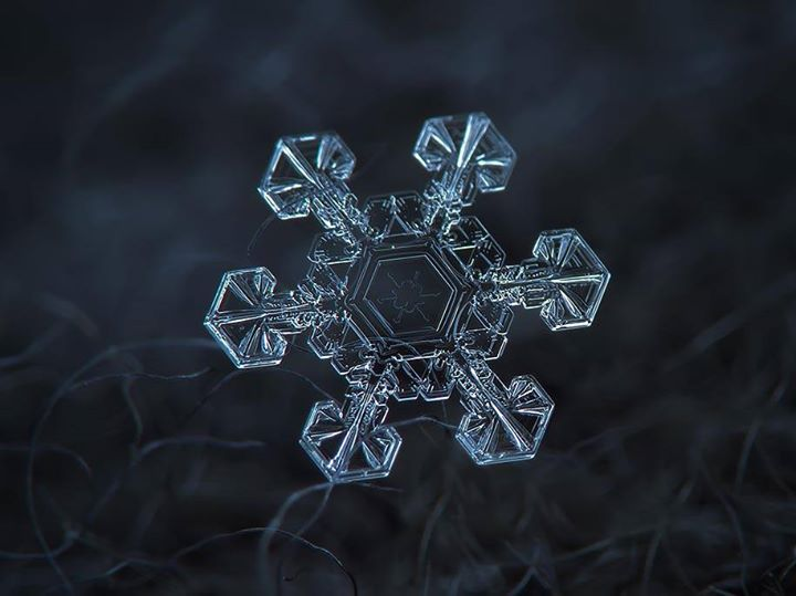 Photography snowflakes