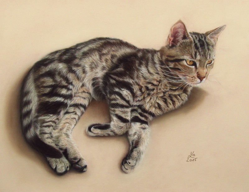 Pastel paintings by Karin Kiessling