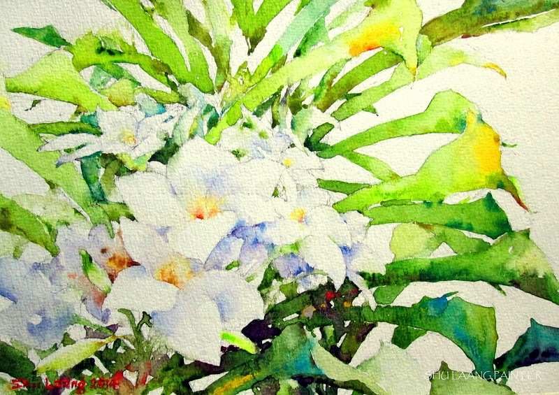 Watercolour painting by Goh Shu Laang - Plumeria